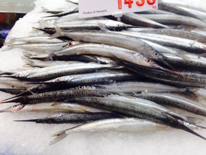 Garfish at Sydney Fish Markets