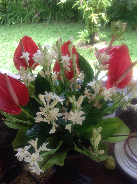 Flowers in Ubud
