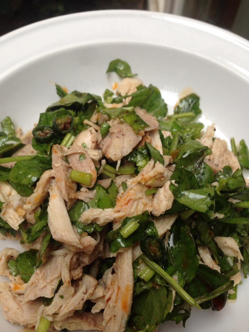 Spicy shredded chicken salad