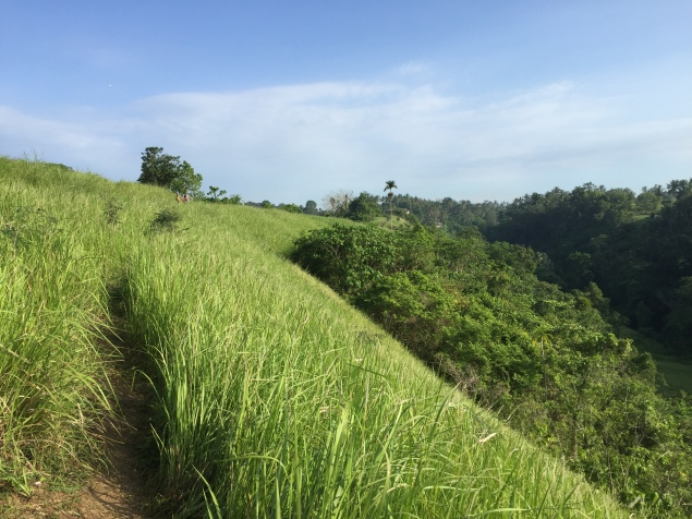 Views from Campuhan Ridge walk, close to but far from Ubud centre traffic