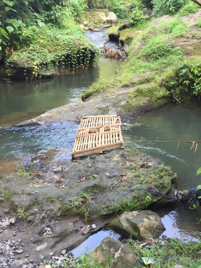 "Makeshift bamboo ""bridge"" at start of Campuhan Ridge walk"