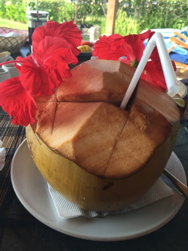 Fresh young coconut with breakfast at Turtle Bay Hideaway, Jasri, East Bali