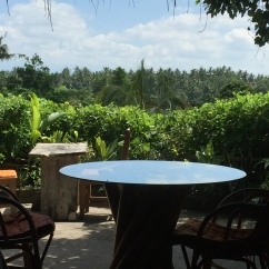 View across Campuhan valleys from Yellow Flower Cafe Ubud
