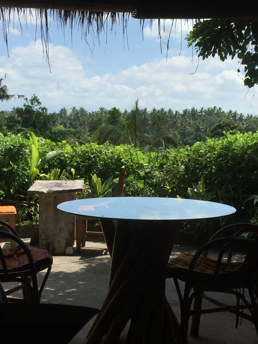 Image freespiritfood view across campuhan valleys from yellow flower cafe ubud mightylinksfo